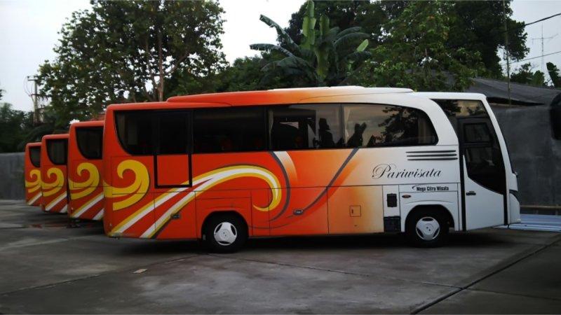 saturental - foto medium bus pariwisata mega citra wisata 25s 31 seats c