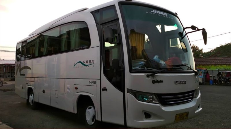 saturental - foto medium bus pariwisata ness trans 31s 35 seats a