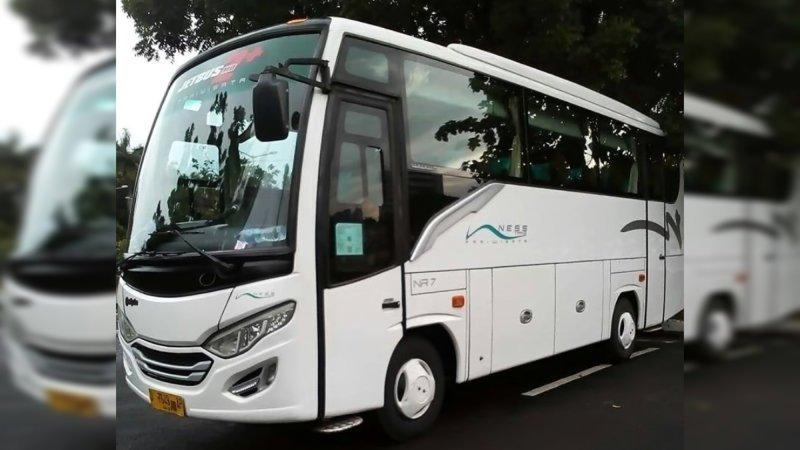 saturental - foto medium bus pariwisata ness trans 31s 35 seats d