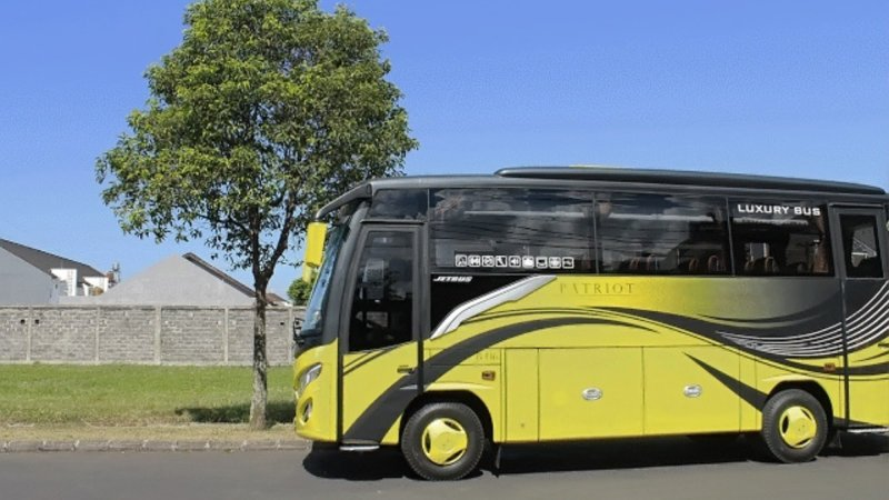 saturental - foto medium bus pariwisata patriot 31 seat h