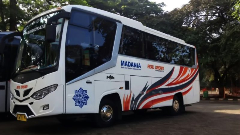 saturental - foto medium bus pariwisata real dream 29s 31 seats b
