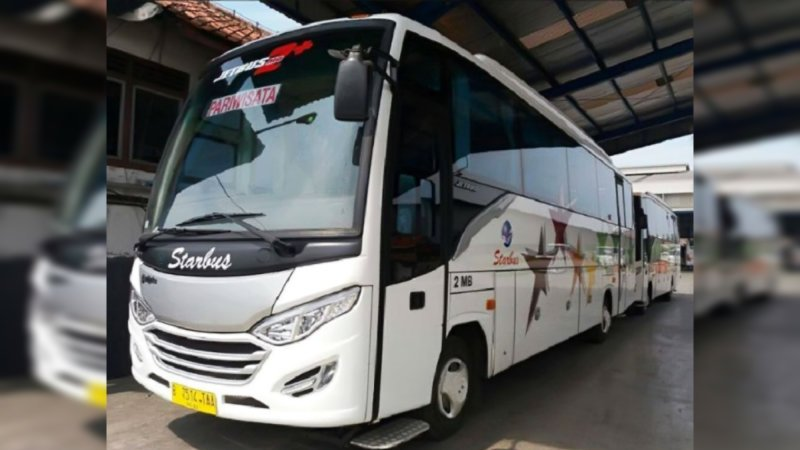 saturental - foto medium bus pariwisata starbus 27s 31 seats b