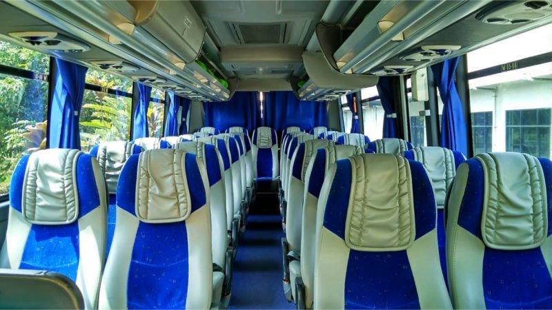 saturental - foto medium bus pariwisata surya putra interior dalam 25s 31s 35 seats b