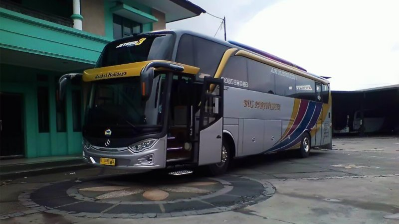 saturental - foto big bus pariwisata jackal holidays shd hdd terbaru 47s 59 seats b