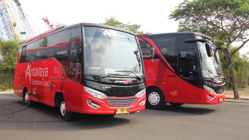 saturental - foto bus pariwisata antavaya medium bus 27 31 seats f