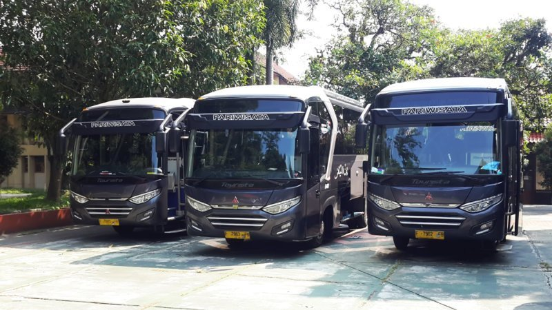 saturental - foto medium bus pariwisata bin ilyas 29s 33s 40 seats a