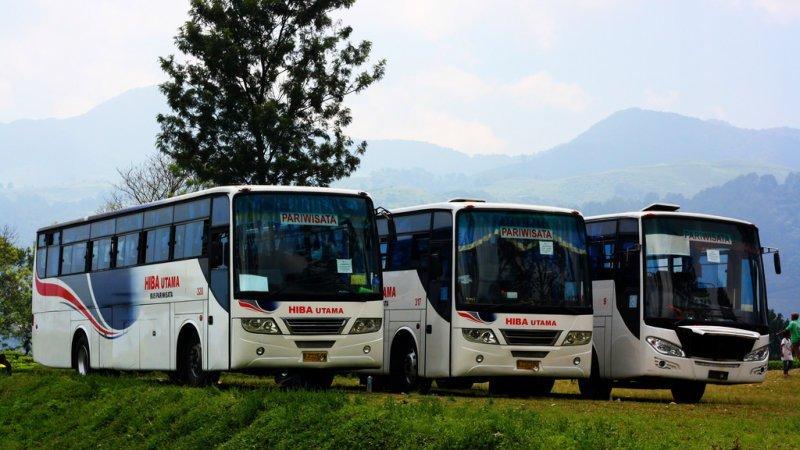 saturental - foto bus pariwisata hiba utama c