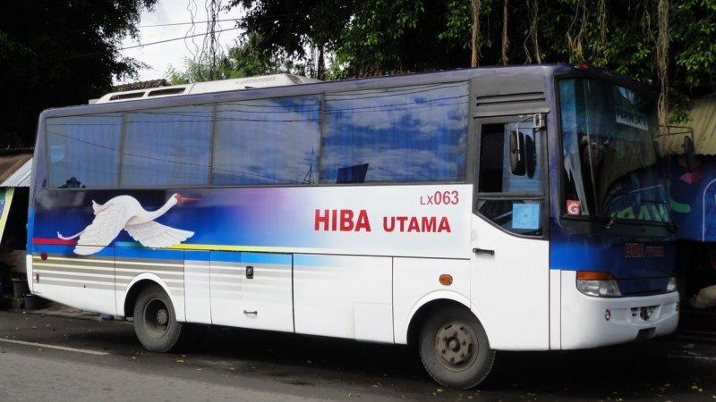 saturental - foto bus pariwisata hiba utama d