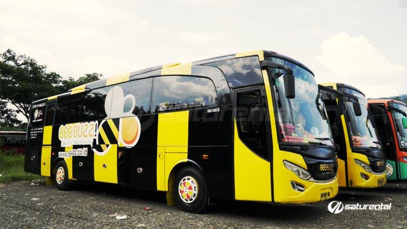 foto bus pariwisata beebuzz 43 48 59 seats b