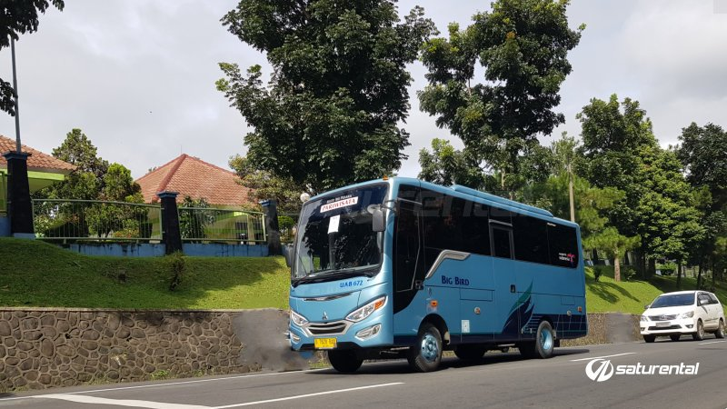 foto bus pariwisata big bird medium 25 seats o