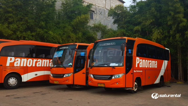 foto bus pariwisata panorama medium 26 31 seats g