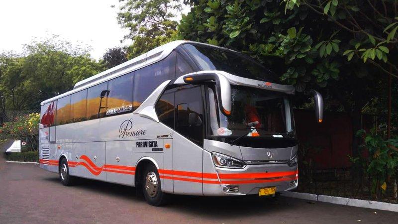 foto bus pariwisata white horse shd hdd 47 59 seats g