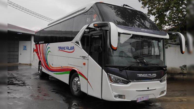 saturental - foto big bus pariwisata terang fajar shd hdd terbaru 45t 59 seats b