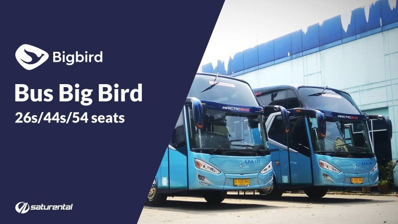 saturental - foto bus pariwisata big bird shd hdd a800