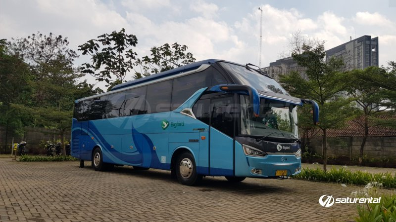 saturental - foto big bus pariwisata big bird shd hdd terbaru 37 44 54 seats b