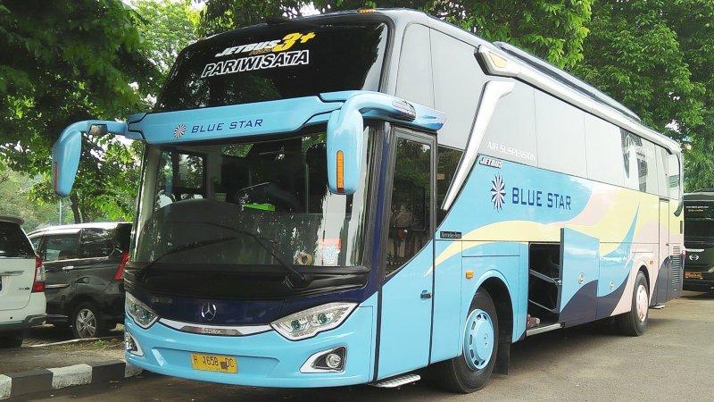 saturental - foto big bus pariwisata blue star shd hdd 47 59 seats new jetbus 3 a