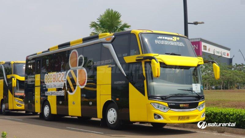 saturental - foto bus pariwisata beebuzz terbaru shd hdd 47 59 seats a