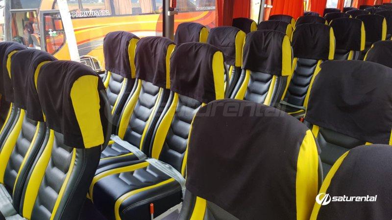 saturental - foto bus pariwisata beebuzz terbaru shd hdd interior dalam 47 59 seats b