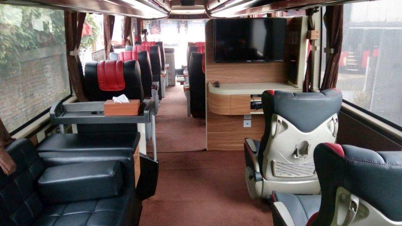 saturental - sewa bus pariwisata luxury thumb d