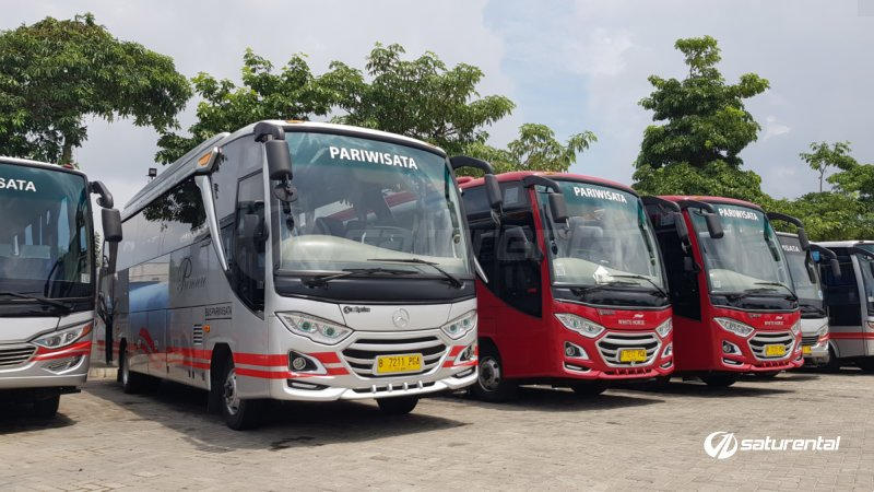 saturental - foto medium bus pariwisata white horse 35 seats a
