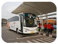 saturental - sewa bus pariwisata untuk jemput atau drop ke bandara atau stasiun a