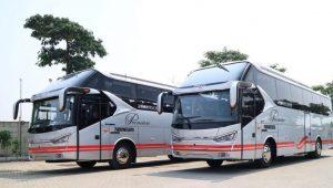 Sewa Bus Pariwisata White Horse