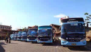 Sewa Bus Pariwisata Blue Star